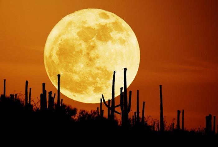Mơ thấy mặt trăng có điềm báo gì đặc biệt? 1050093456