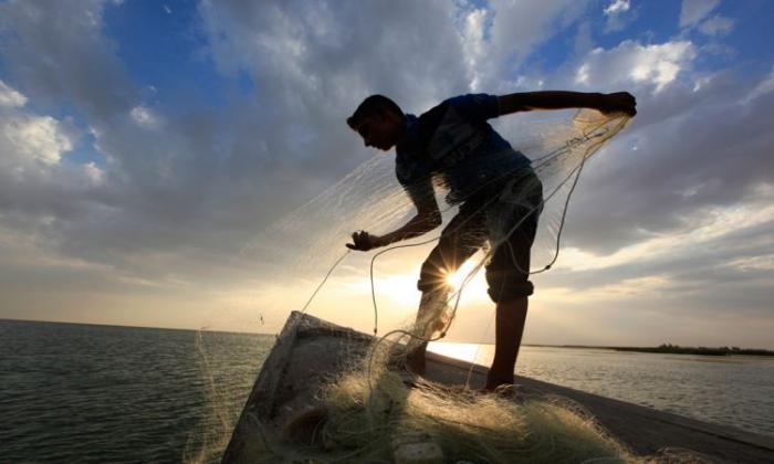 Mơ thấy kéo lưới bắt cá mang điềm báo thế nào? Tốt hay xấu? 726007829