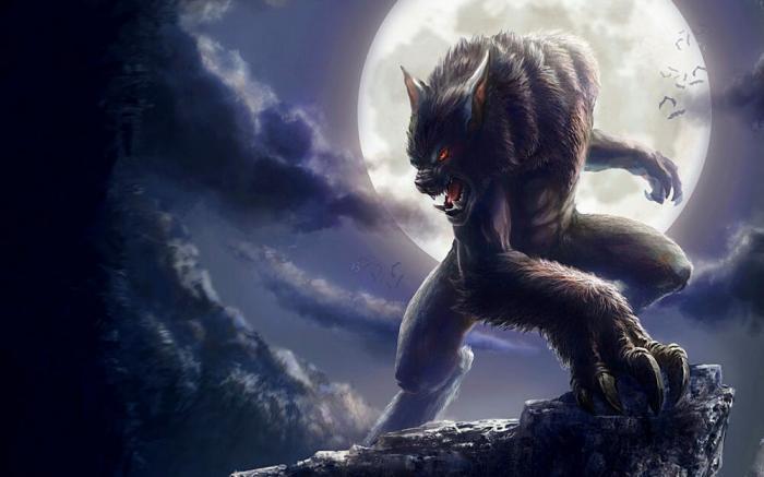 Mơ thấy ma sói điềm báo thế nào? Đánh con gì ăn to trúng lớn? 955205025