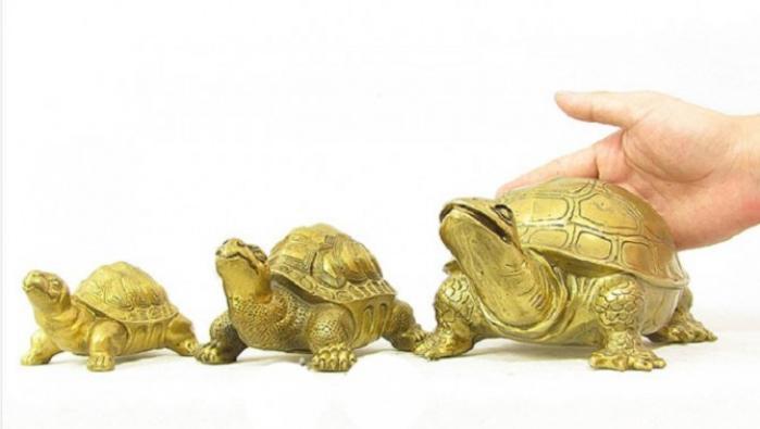 Ý nghĩa của linh vật rùa phong thủy  241981846