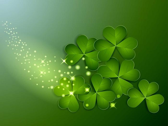 Khám phá ý nghĩa của cây cỏ may mắn trong đời sống 831935279