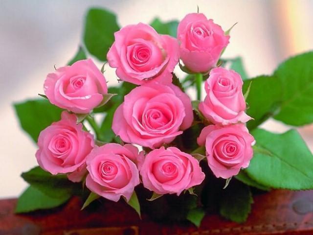 Giải mã giấc mơ thấy hoa hồng đánh con gì để trúng lớn? 406375386
