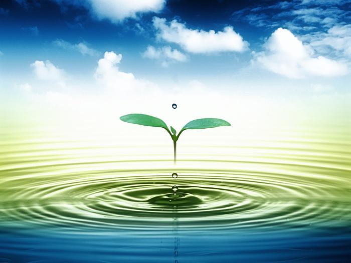 Giải mã giấc mơ thấy nước chính xác nhất 930566696