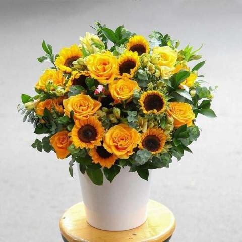 Mẹo cắm hoa hướng dương bàn thờ đẹp, tươi lâu 845121124
