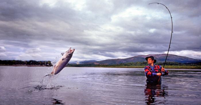 Mơ thấy cá cắn câu đánh con gì? Điềm báo thế nào? 120109817