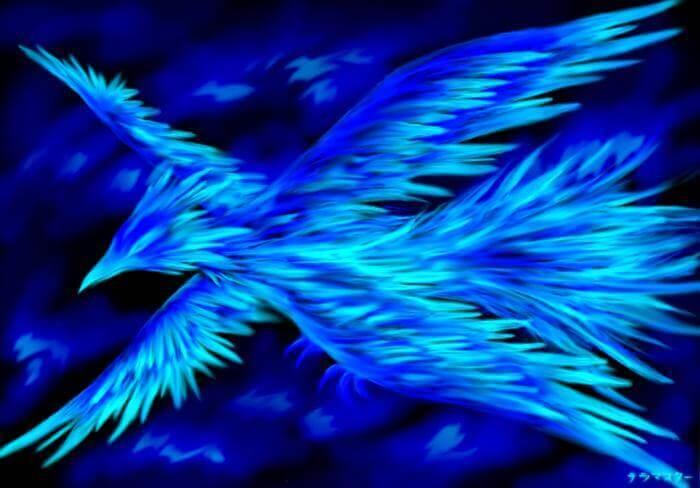 Mơ thấy chim phượng hoàng có điềm gì và đánh số con gì? 2080452056