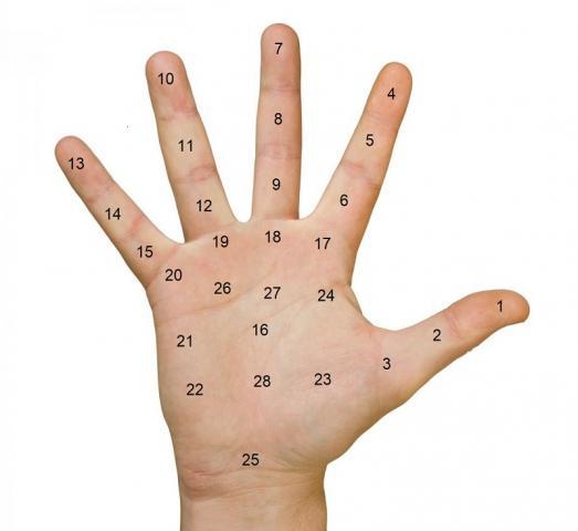 Giải mã ý nghĩa nốt ruồi trong lòng bàn tay phải 287187355