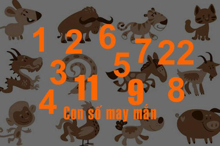 Hé lộ những con số may mắn theo ngày sinh, theo 12 con giáp 1243089528