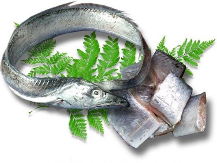 Giải mã giấc mơ thấy cá hố và những con số đề có liên quan 1865516840