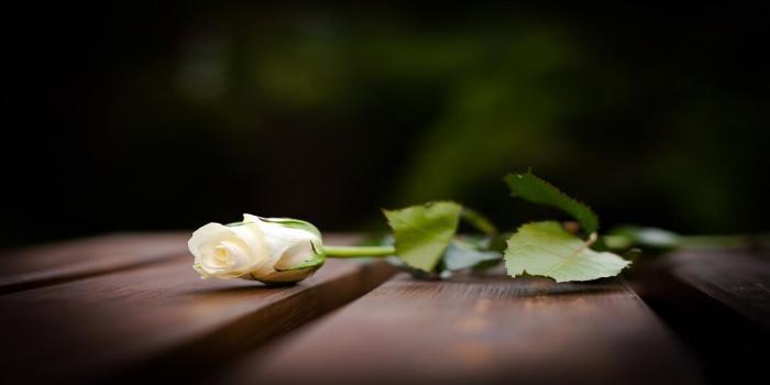 Lời chia buồn đám tang đạo công giáo ý nghĩa nhất 2013392085