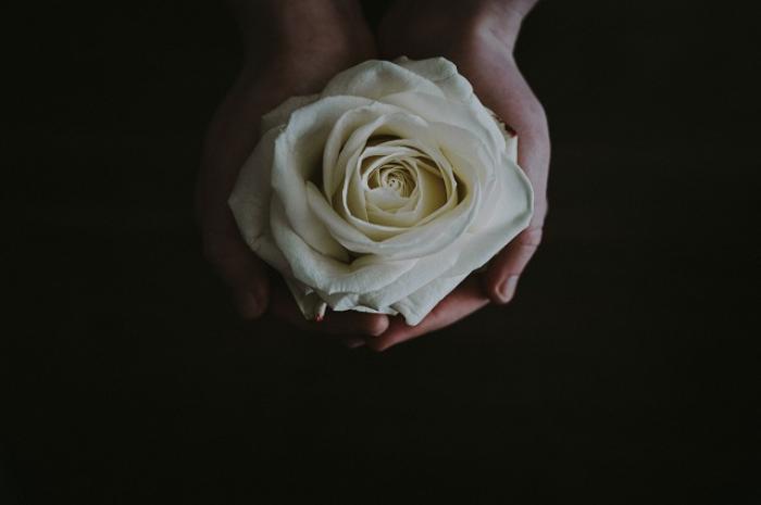 Ý nghĩa hoa hồng trắng đám tang không phải ai cũng biết 1120877839