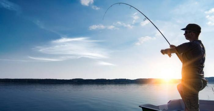 Giải mã giấc mơ thấy câu cá chính xác nhất 1242959461